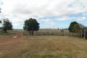 1200 Acres with Piggery & Home